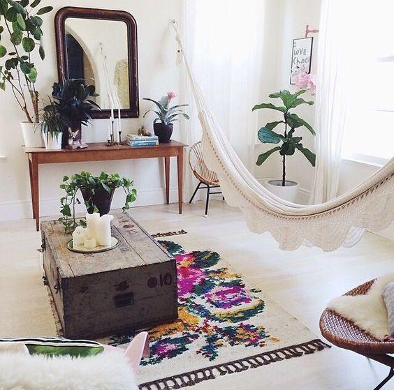 plantas_en el hogar